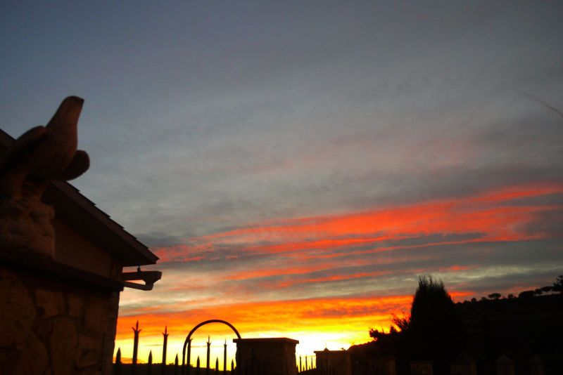 tardor sol 1