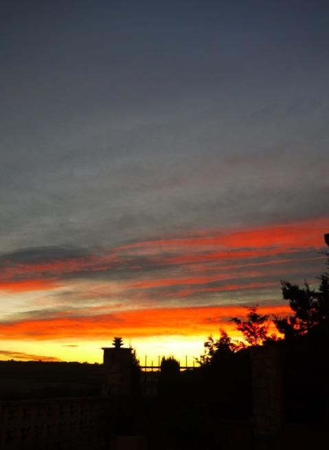 tardor sol 2 bona