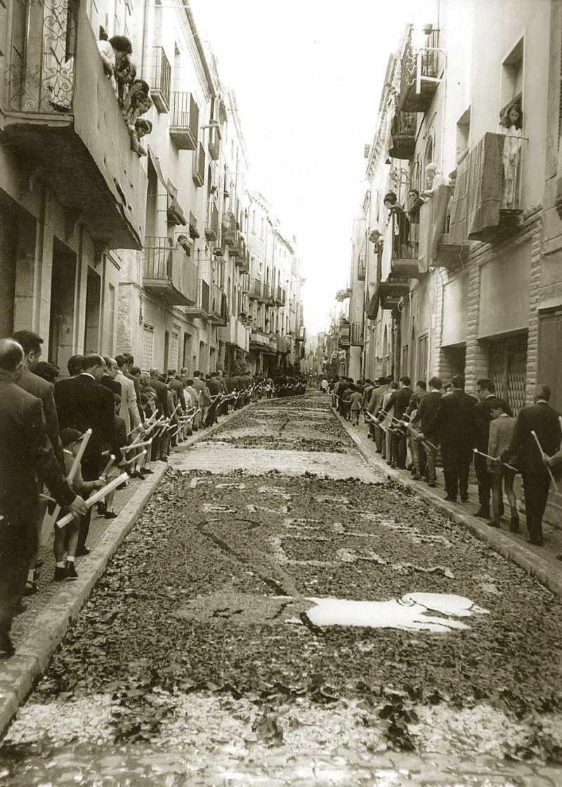 carrer major catifes