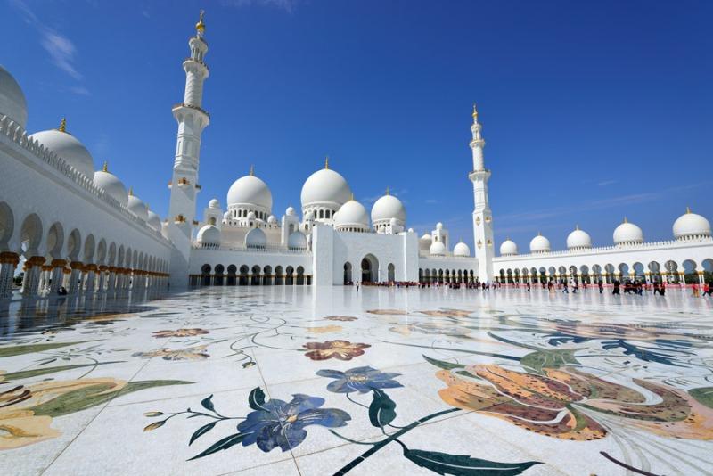 terra zayed